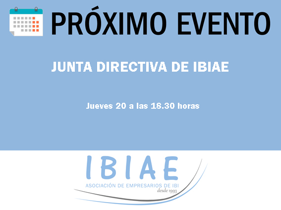 IBIAE - PLENO CAMARA COMERCIO DE ALICANTE
